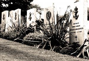 294459_graves.jpg