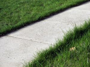 999679_the_sidewalk.jpg